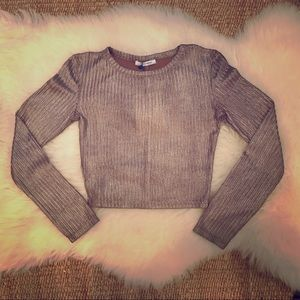 Zara Trafaluc Gold Top (New)